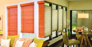 blinds vs. shades