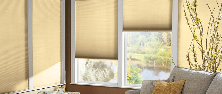 Window Shades For Sale Mike 39 S Window Decorating Blog